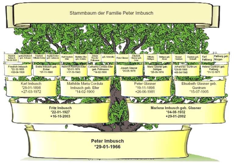 Stammbaum stammbaum grafik stammbaum vergr peter imbusch marlene fritz